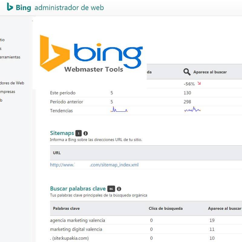 Webmasters de Bing